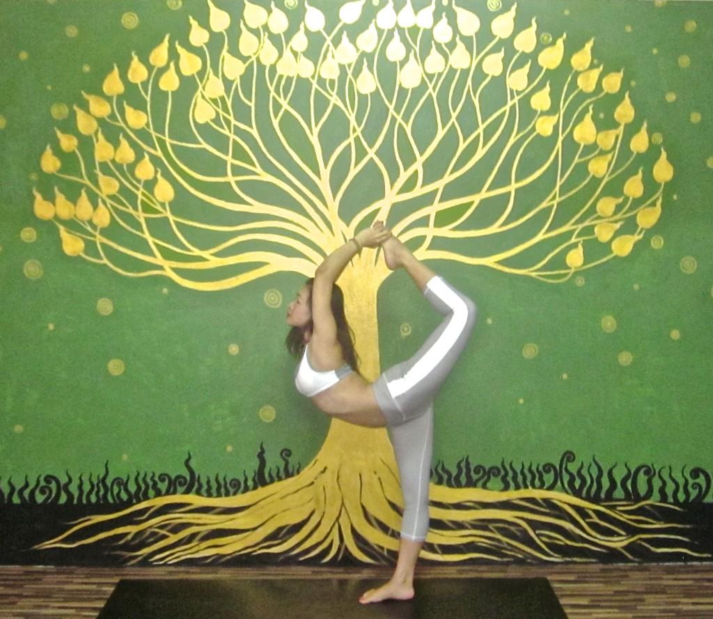 yoga hangdong ,yoga hangdong chiangmai,chiangmai yoga hangdong ,yoga thailand
