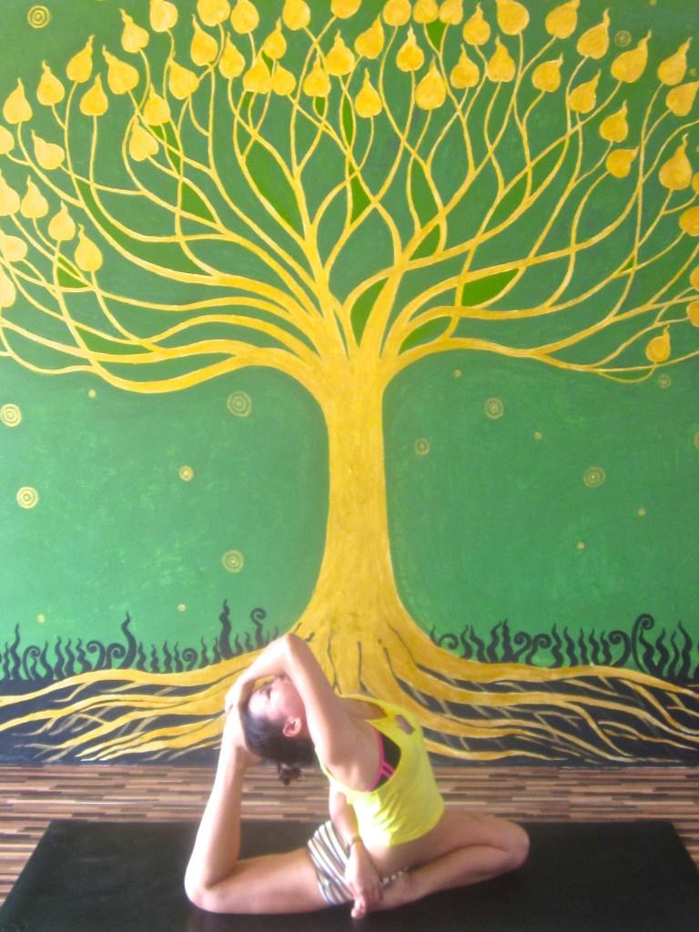 yoga chiang mai,โยคะ , โยคะ เชียงใหม่